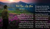 Bài Thơ - Chị Hứa