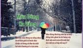 Mùa Đông Xa Vắng