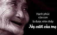 Nhớ MẸ Yêu & Vầng Thơ Khóc MẸ & Đóa Hồng Cho MẸ & Mưa Tháng Hạ (Thơ)