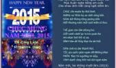 Chúc Mừng Năm Mới, 2015