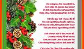 Niềm Vui Giáng Sinh